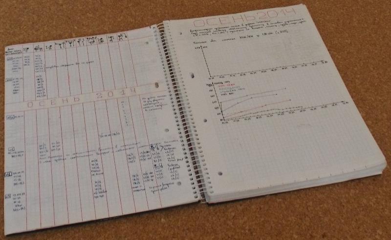 Относитесь внимательно к дневнику тренировок